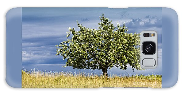 Apple Tree Summer Landscape Galaxy Case