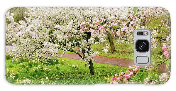 Apple Trees In Bloom Galaxy Case by Jessica Jenney