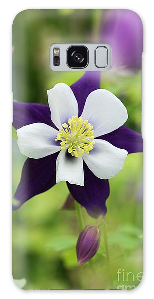 Aquilegia Galaxy Case - Aquilegia Swan Violet And White by Tim Gainey