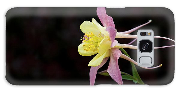 Aquilegia Galaxy Case - Aquilegia  by Tim Gainey