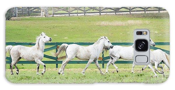 Arabian Horses Galaxy Case