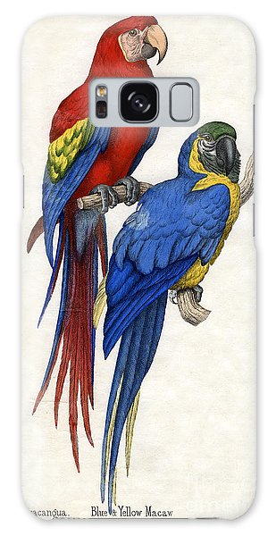 Aracangua And Blue And Yellow Macaw Galaxy Case