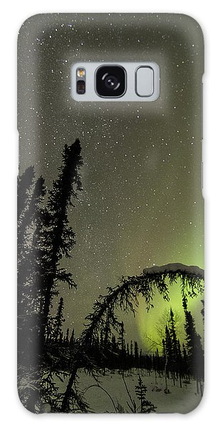 Arched Spruce Aurora Galaxy Case