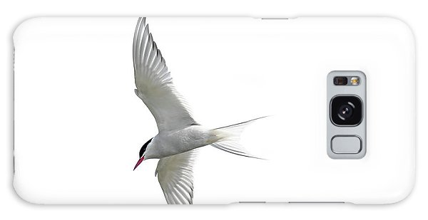Arctic Tern Flying In Mist Galaxy Case