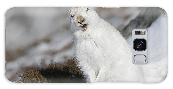 Are You Kidding? - Mountain Hare #14 Galaxy Case