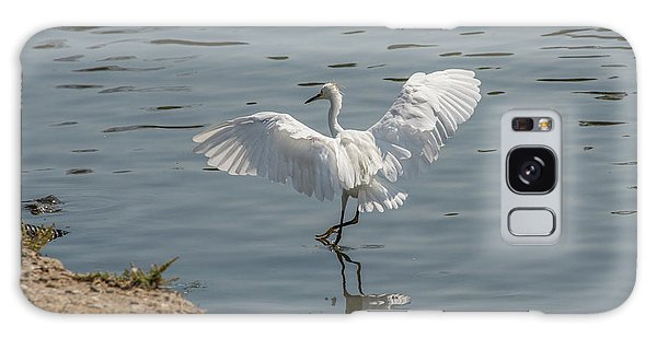 Are You Ready To Dance - Great Egret In Mtn View Ca Galaxy Case
