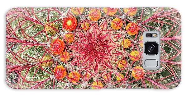 Cacti Galaxy Case - Arizona Barrel Cactus by Delphimages Photo Creations
