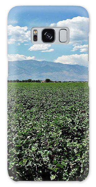 Arizona Cotton Field Galaxy Case