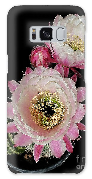 Arizona Desert Cactus Flowers Galaxy Case