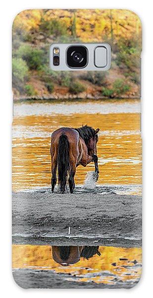 Arizona Wild Horse Playing In Water Galaxy Case