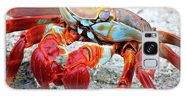 Artistic Nature Red And Blue Rainbow Crab 908 Galaxy Case