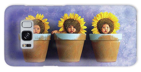 Sunflower Galaxy S8 Case - Sunflower Pots by Anne Geddes
