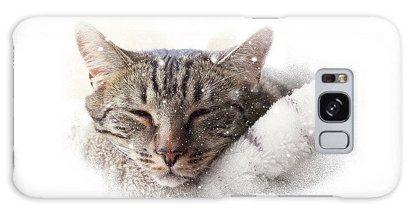 Cat And Snow Galaxy Case