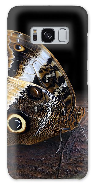 Yellow-edged Giant Owl Butterfly Galaxy Case