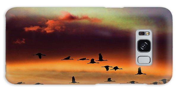 Sandhill Cranes Take The Sunset Flight Galaxy Case