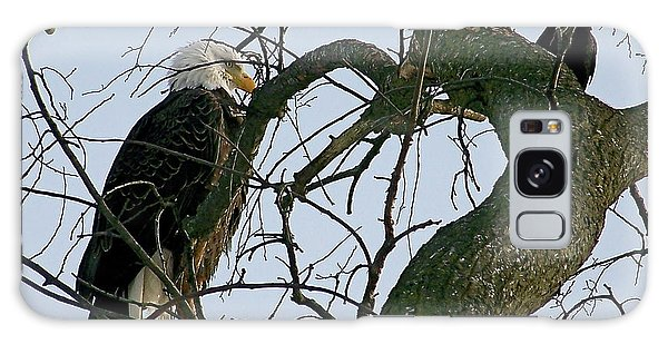 As The Eagle Looks On Galaxy Case by Sue Stefanowicz