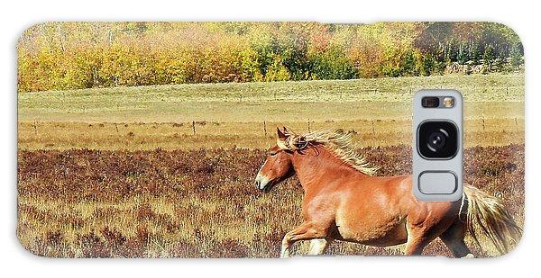 Aspen And Horsepower Galaxy Case