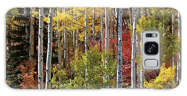 Aspen And Red Maple Galaxy Case