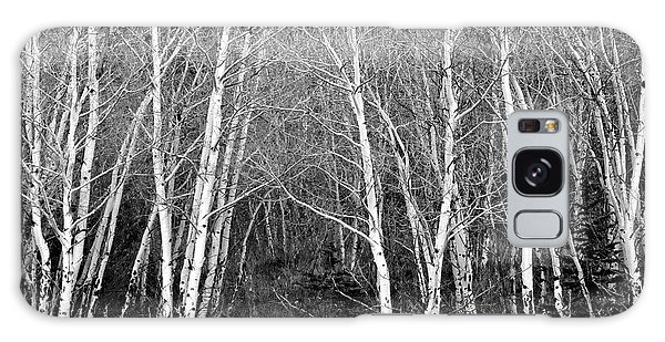Aspen Forest Black And White Print Galaxy Case