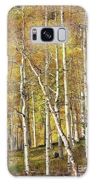 Aspen Forest Galaxy Case