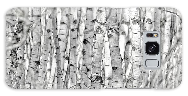 Aspen Forest Iv Galaxy Case