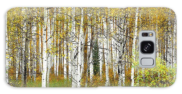 Aspen Forest Panoramic Galaxy Case
