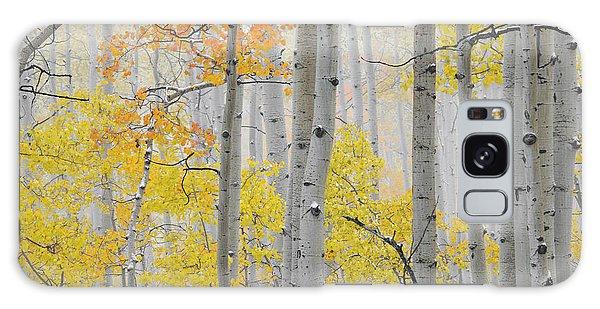Aspen Forest Texture Galaxy Case