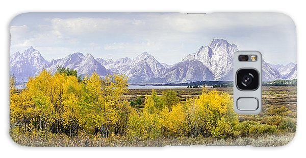 Aspen Gold In The Tetons Galaxy Case