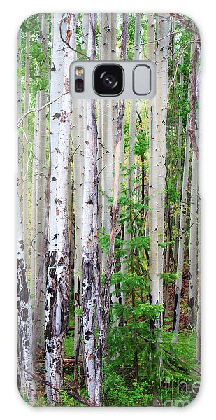 Aspen Grove In The White Mountains Galaxy Case