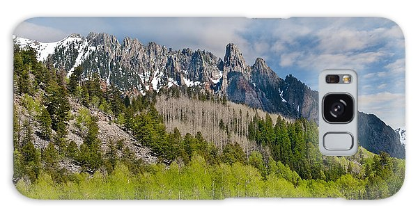 Aspen Grove Below The Ophir Needles Galaxy Case by Jeff Goulden