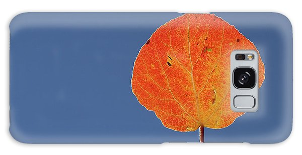 Aspen Leaf 1 Galaxy Case by Marie Leslie