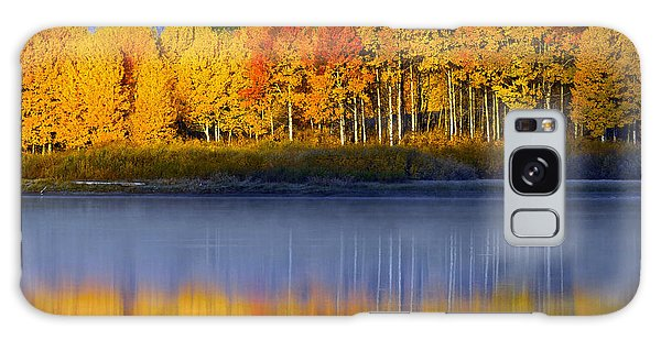 Galaxy Case featuring the photograph Aspen Reflection by Wesley Aston