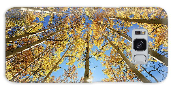 Aspen Tree Canopy 2 Galaxy Case