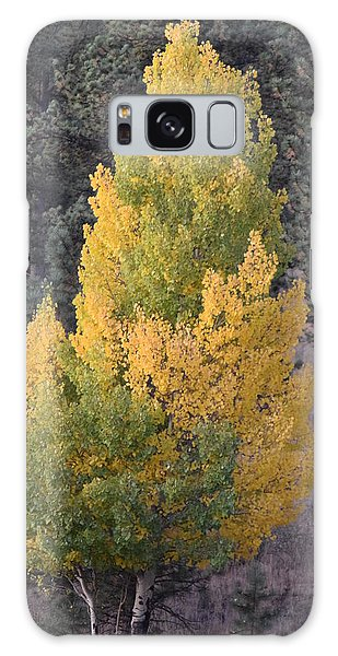 Aspen Tree Fall Colors Co Galaxy Case