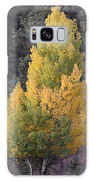 Aspen Tree Fall Colors Co Galaxy Case