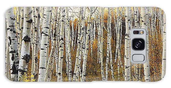 Aspen Tree Grove Galaxy Case