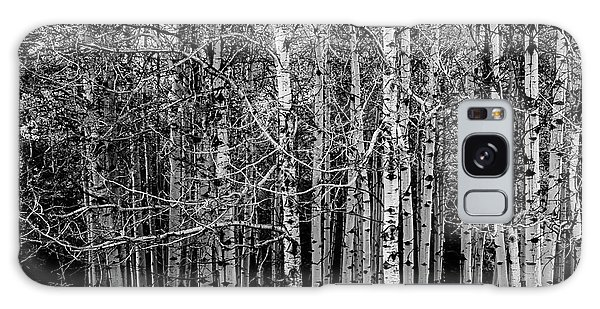Aspen Trees Canadian Rockies Black And White Galaxy Case