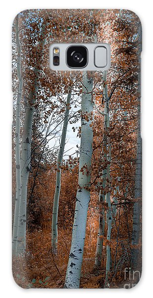 Aspen Trees Ryan Park Wyoming Galaxy Case