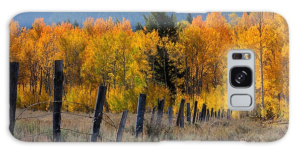Aspens And Fence Galaxy Case