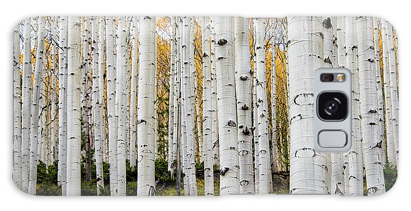Aspens And Gold Galaxy Case