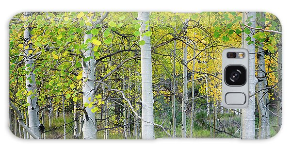 Aspens In Autumn 6 - Santa Fe National Forest New Mexico Galaxy Case by Brian Harig