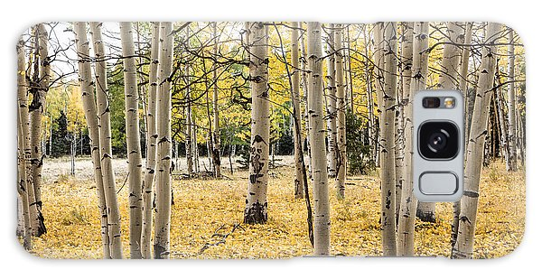 Aspens In Conejos County In Colorado, Near The New Mexico Border Galaxy Case by Carol M Highsmith