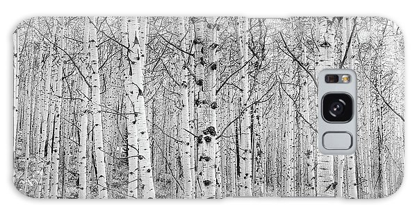 Aspens In High Key Galaxy Case by John De Bord