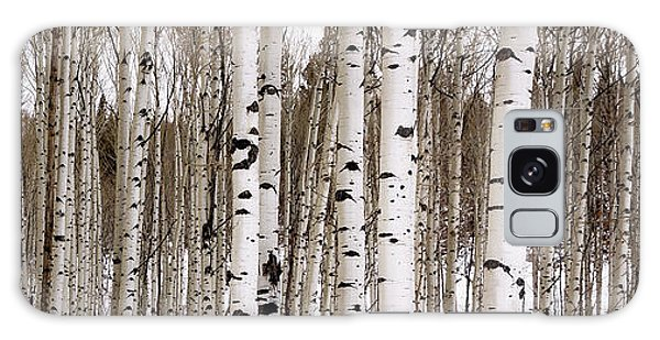 Aspens In Winter Panorama - Colorado Galaxy Case