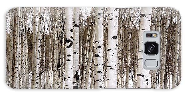 Aspens In Winter Panorama - Colorado Galaxy Case by Brian Harig
