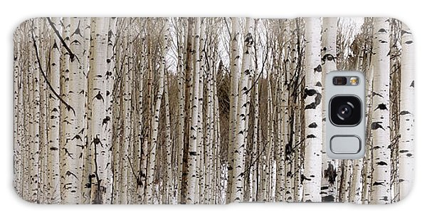 Tranquil Galaxy Case - Aspens In Winter Panorama - Colorado by Brian Harig