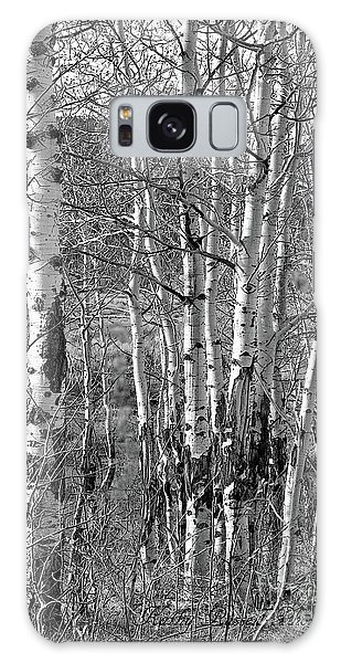 Aspens Galaxy Case by Kathy Russell