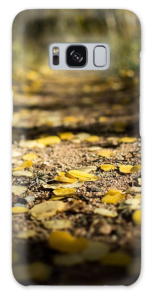 Aspen Leaves On Trail Galaxy Case