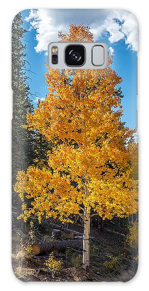 Aspen Tree In Fall Colors San Juan Mountains, Colorado. Galaxy Case