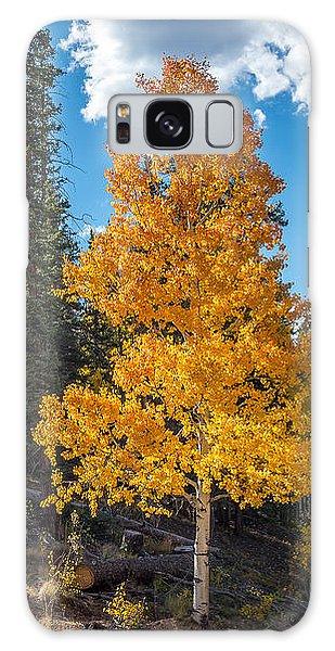 Aspen Tree In Fall Colors San Juan Mountains, Colorado. Galaxy Case